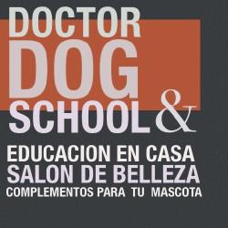 LA ORDEN SENTADO CON DR. DOG
