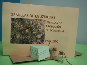 SEMILLAS DE EGUZKILORE - FLORISTERÍA LOREA