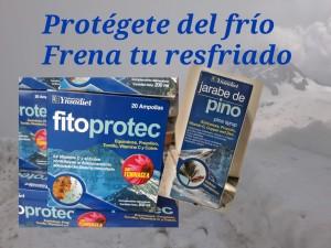PROTÉGETE DEL FRIO, FRENA TU RESFRIADO - FLORISTERÍA LOREA