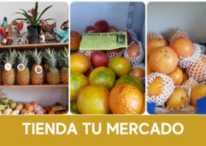 FRUTA Y PRODUCTOS LATINOS -  TU MERCADO